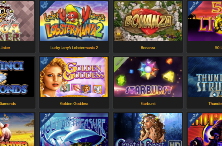 Top 5 Websites Where You Can Play Free Casino Games