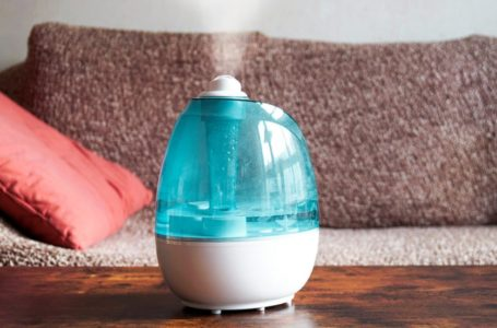 Buying A Humidifier? Here's What To Look For