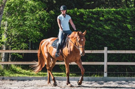How To Be Fully Prepared For Horseback Riding